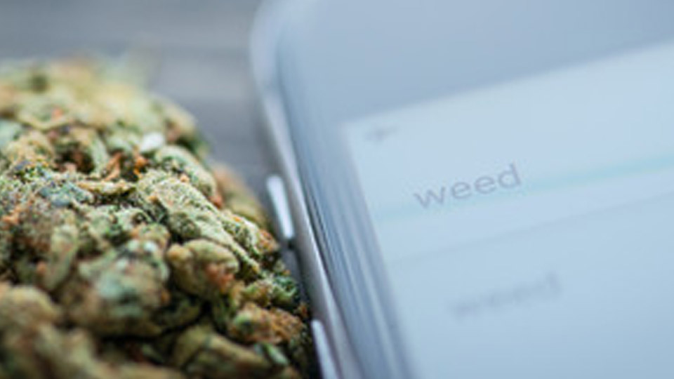 bud and phone search